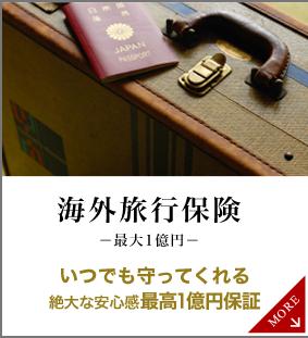 海外旅行保険 最大1億円 いつでも守ってくれる 絶大な安心感最高1億円保証